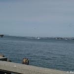 D100_05948-MyFirstPhotoWalkSF-blog