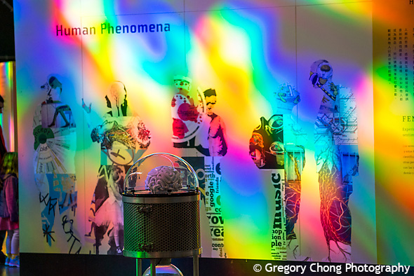 D800_018151-Exploratorium-blog