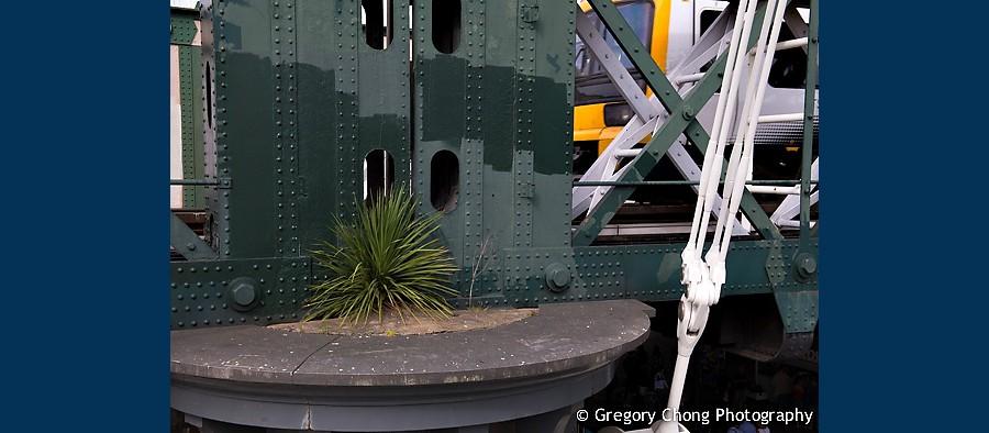 D800-023246-Photowalk-London-blog