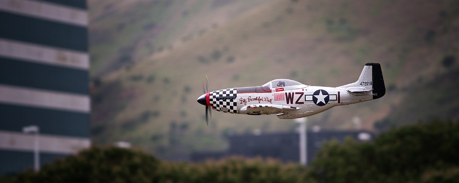 D800-027915-Daves-P51Mustang