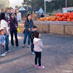 D700_038271-ArataPumpkinPatch-blog
