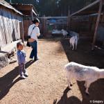 D700_038350-ArataPumpkinPatch-blog