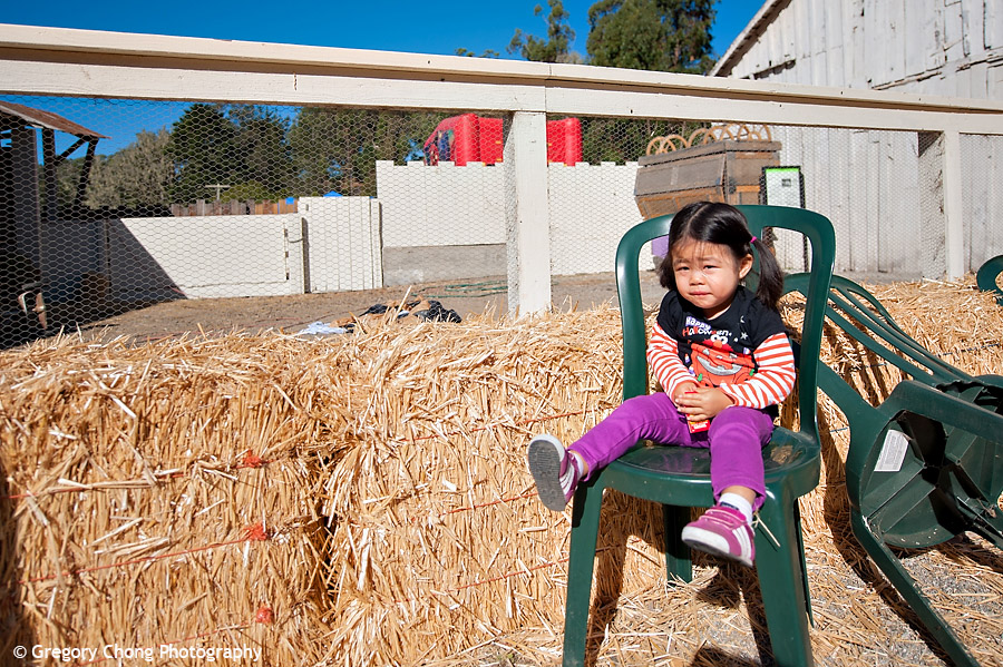 D700_038358-ArataPumpkinPatch-blog