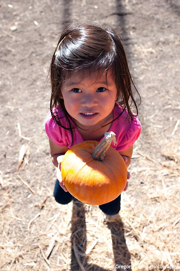 D700_038379-ArataPumpkinPatch-blog