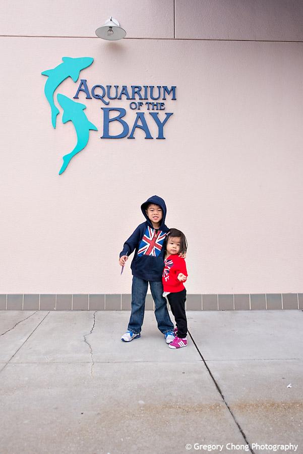 D800_004450-AquariumoftheBayPier39-blog