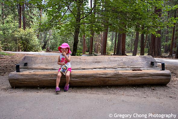 D800_013414-YosemiteFalls-blog